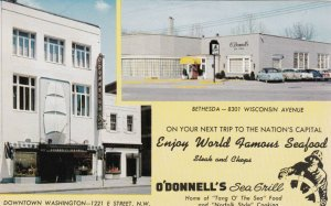 Washington D C O'Donnel's Sea Grill Restaurant sk3814