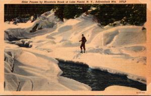New York Adirondacks Lake Placid Skier Pausing By Mountain Brook 1951 Curteich