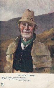 An Irish Peasant , Ireland , 00-10s ; TUCK 1381