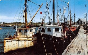 Fishing Boats in Harbor in Provincetown, Massachusetts