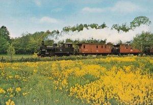Anten Grafsnas Jarnvag Alingsastrakten 3039 Swedish Train Rail Postcard