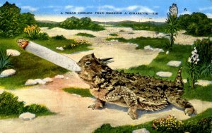 TX - Texas Horned Toad Smoking a Cigarette