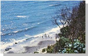Martha's Vineyard, Mass/MA Postcard,Gay Head Beach/Cape Cod