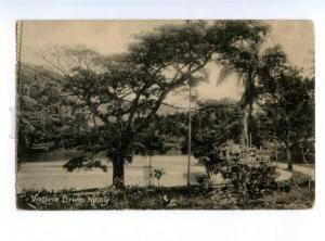 174010 CEYLON KANDY Victoria Drive Vintage Tuck postcard