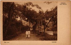 CPA Tjimlalor nabij MALANG INDONESIA (566218)