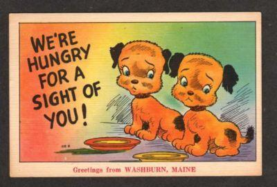 ME Greetings From WASHBURN MAINE Comic Postcard Dogs