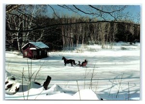Postcard New England Scenic -Company Coming winter horse sleigh NH VT ME NES2 K3