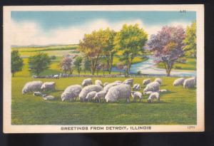 GREETINGS FROM DETROIT ILLINOIS SHEEP RANCH FARMING VINTAGE POSTCARD ILL.