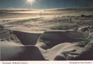 Durham Snowscape at Bolihope Common Postcard