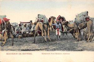 Campement d'une Caravane Chameaux Camel Unused