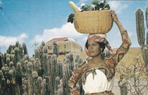 Native fruit girl , CURACAO , N.A. , 50-60s