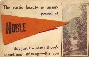 F47/ Noble Illinois Postcard 1912 Felt Pennant Rustic Beauty Greetings