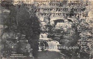 Mongaup Falls - New York