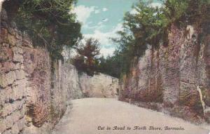 Bermuda Cut in Road to North Shore