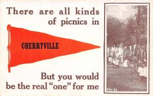 Cherryville NJ All Kinds of Picnics~You'd Be The Real One~String of Banners 1915