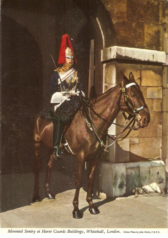 Mounted Sentry at Horse Guards Building Nice English PC. Size 6x4