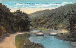 D72/ Foreign Postcard Jamaica c1910 Flat Broidge Rio Cobre Bog Walk