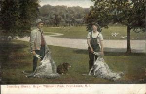 Providence RI c1910 Postcard - Shearing Ship Roger Williams Park