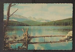 Scene In Jasper Park, Alberta - Used 1968 - Corner Bends
