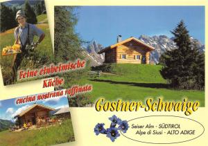 BG28028 malga gostner schwaige   seiser alm alpe di siusi dolomiti  italy