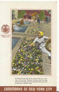 America Postcard - Rockefeller Centre - Pansy Beds - New York City - Ref 17900A