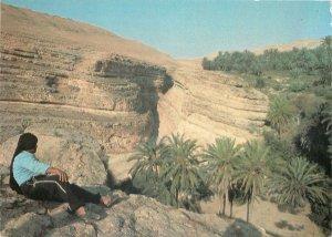 Tunisia tamerza panoramic view  Postcard