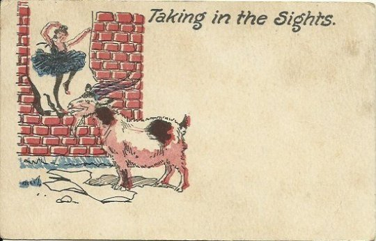 Antique Early American Postcard Comic Taking in the sights 1907