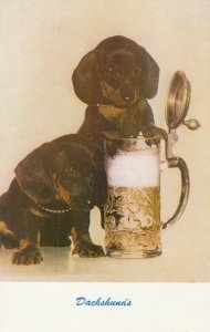 DACHSHUNDS with a beer stein, 1940-60s