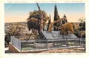 Israel Hebron Abraham's Oak Tree, Roble Querccia Chene Eiche