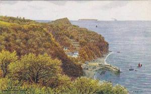 AS, Clovelly From The Hobby Drive, Clovelly (Devon), England, UK, 1900-1910s