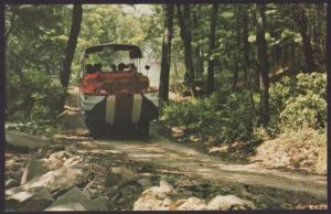Great Adventure Ducks,Wisconsin Dells,WI Postcard