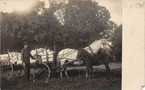 F82/ Occupational RPPC Postcard c1910 Horse Delivery Wagon 8