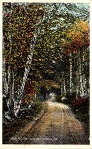 New Hampshire White Mountains Bethlehem Swazey Lane 1917