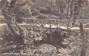 Mawgan Woods, Rustic Bridge (Lanherne) 1905