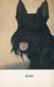 DOG ; Scottie Dog , 1940-60s