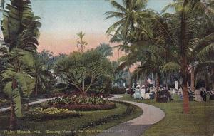 Florida Palm Beach Evening View In The Royal Poinciana Garden