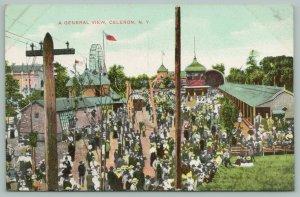 Jamestown-Celeron New York~Amusement Park Birdseye View~Ferris Wheel~c1910