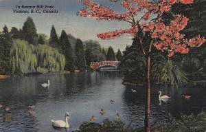 Canada In Beacon Hill Park Victoria B. C. Lake Bridge Postcard