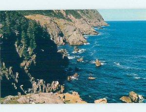 Pre-1980 NATURE SCENE St. John'S Newfoundland NL AD2668