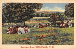Hillsboro New Hampshire Cow Pasture Greeting Antique Postcard K97173