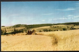 PEI Harvest Time on a Typical Prince Edward Island Farm - Chrome