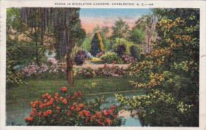 Scene In Middleton Gardens Charleston South Carolina 1937