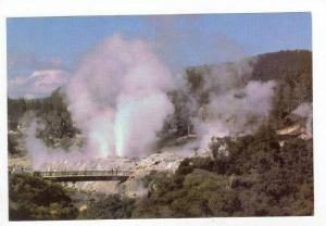 Geuser Field, Pohutu Geyser, Rotorua, New Zealand 60-70s
