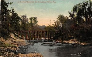 At Lovers' Leap on the Suwannee River, FL, USA Florida