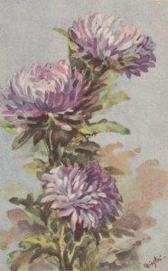 Art Deco ; CHIOSTRI ; Purple Dahlias , 1910-30s