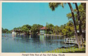 Florida New Port Richie Scene Along Cotee River