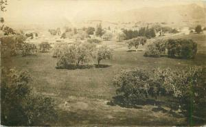 Foothills View Lodi California 1911 RPPC Photo Postcard 3376