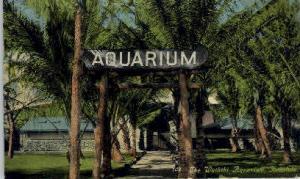 Honolulu Aquarium Honolulu HI Unused