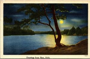 Hart Michigan~Moonlight Highlights Tree by Lake~Full Moon~1947 Linen Postcard
