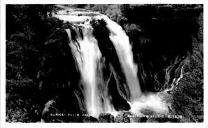 RPPC  Postcard Burney Falls, Shasta County California, Unposted B09